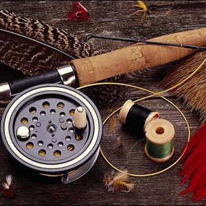 Охотничьи и рыболовные магазины Пристени